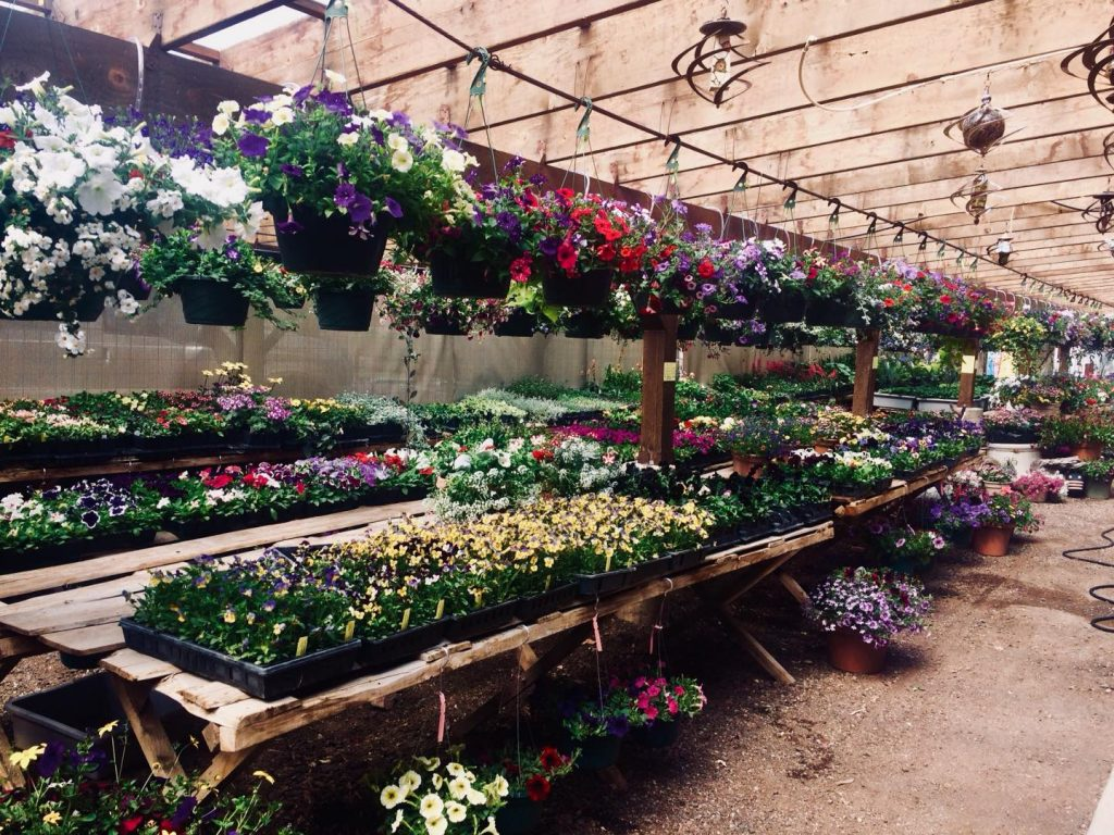 Huerfano Nursery and Garden.jpg